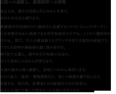 rep_text