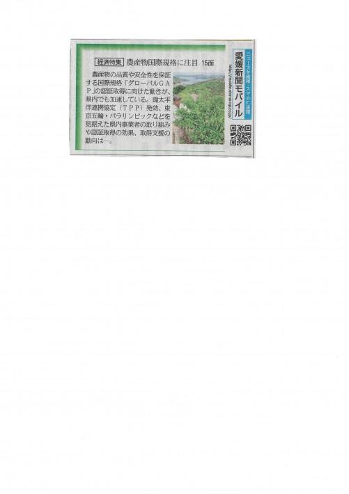愛媛新聞:GLOBAL GAP:ミヤモトオレンジガーデン160620-2