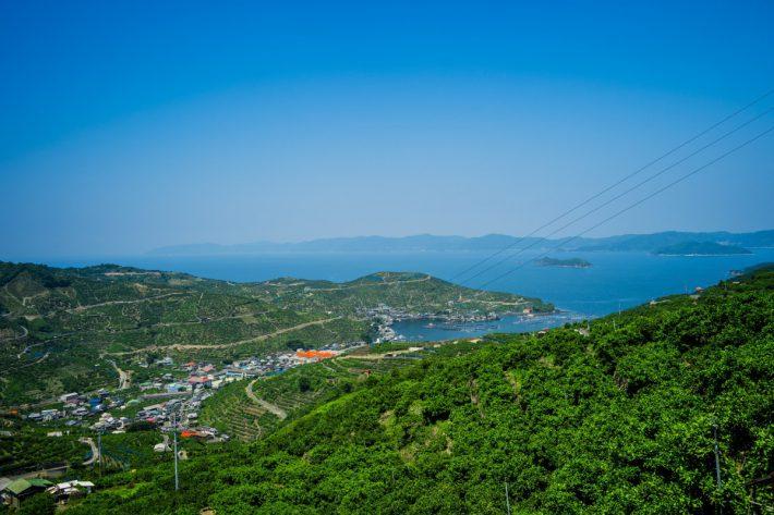 ナカノから見下ろす、みかんの段々畑と宇和海と佐田岬半島
