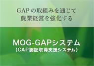 MOG-GAPシステム